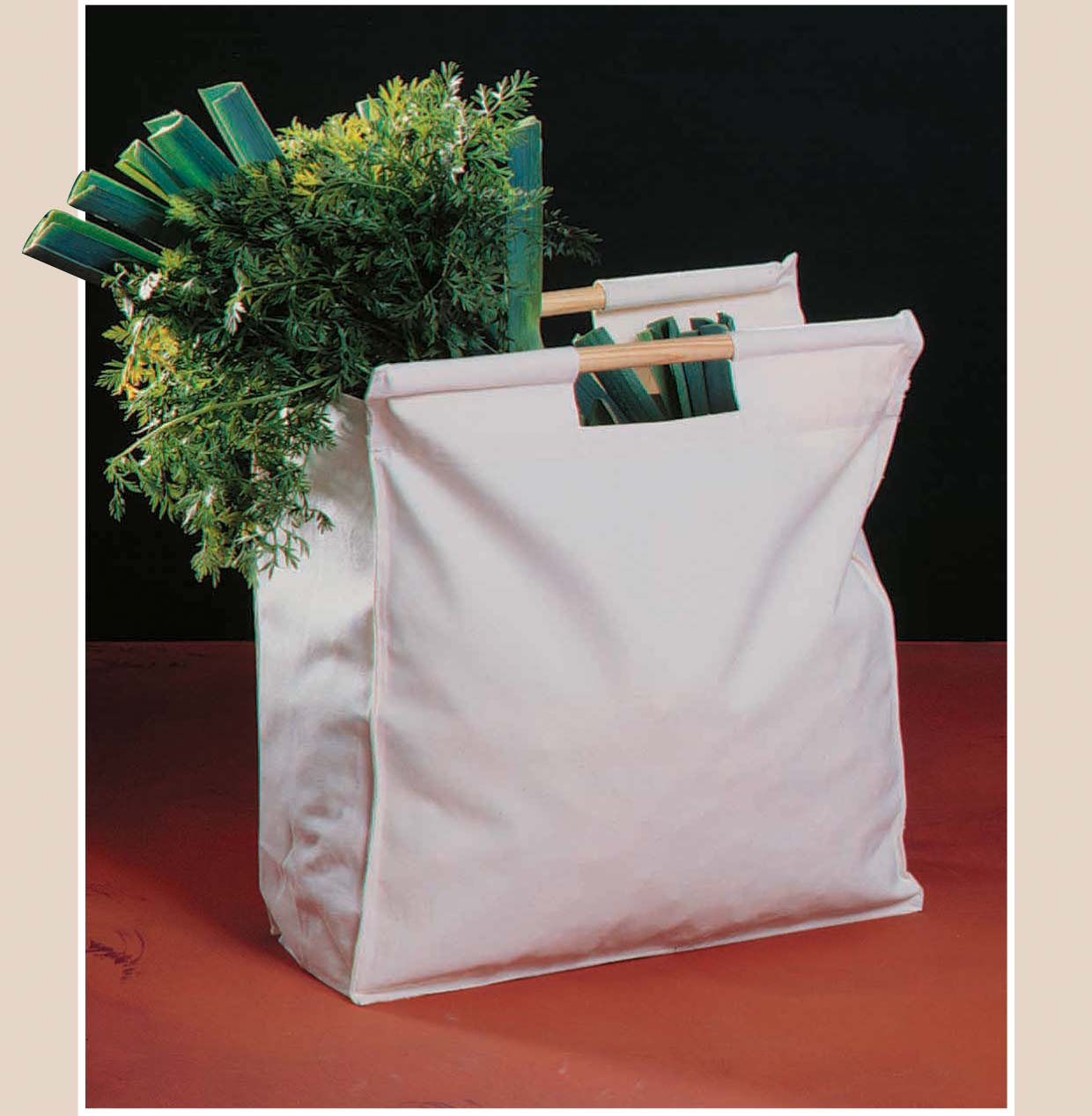 canvas bigshopper P1210