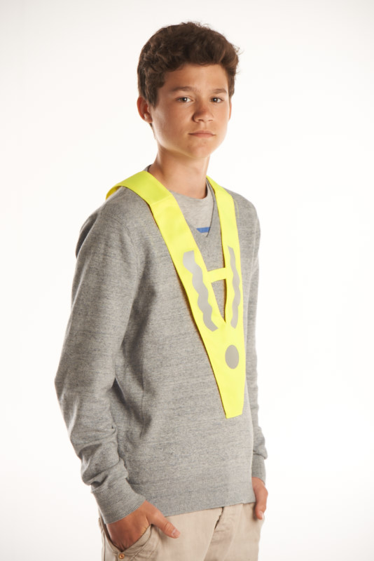 safety collier P980